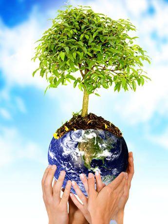 lei-do-meio-ambiente1