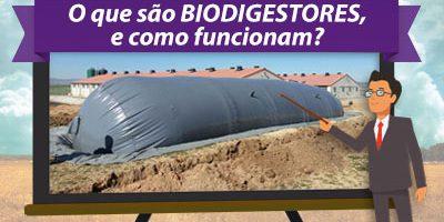 Biodigestor Tubular