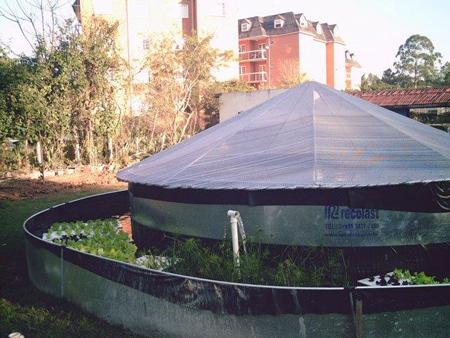 Figura - Aquaponia Recolast - No tanque externo as hortaliças, no tanque central as tilápias