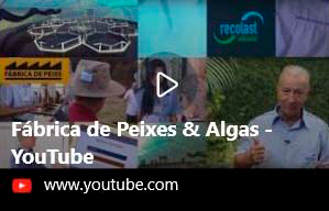 Video da Fábrica de Peixes